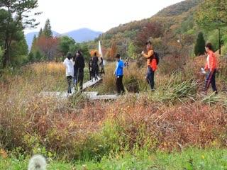 Gyeongsangbuk-do Arboretum